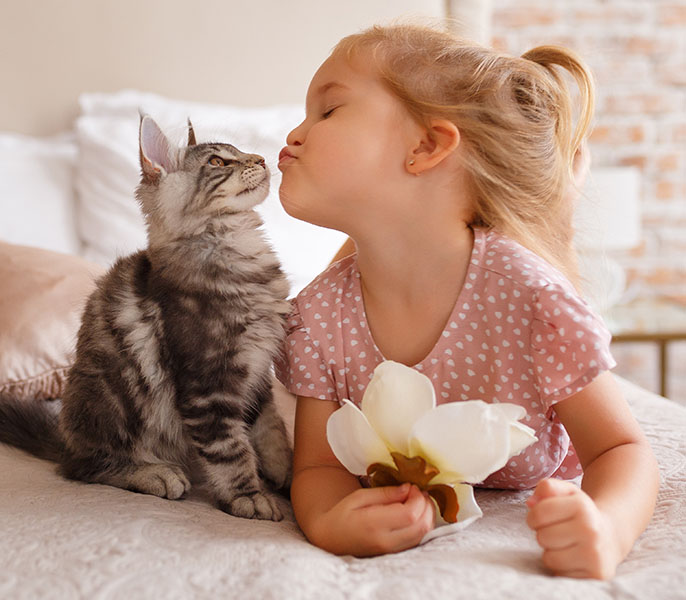 girl kissing cat on bed